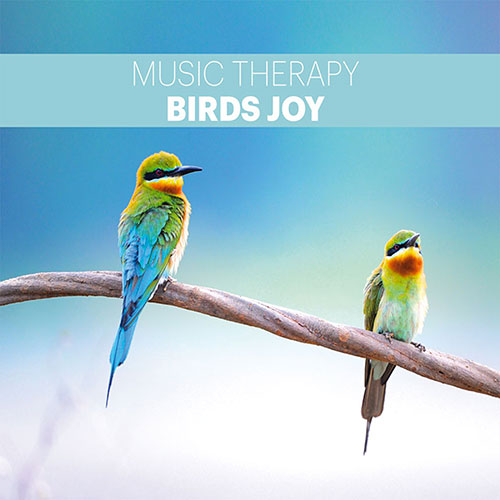 Music 4 Pro : Birds Joy